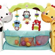 Fisher-Price-Tapis-de-jeu-volutif-musical-pour-bb-avec-plus-de-12-activits-et-jouets-ds-la-Naissance-CCB70-0-1