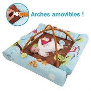 LUDI-Aire-dveil-Chouette-bleue-ds-la-naissance-Tapis-moelleux-116-x-116-cm-lavable-en-machine-4-Boudins-gonflables-qui-crer-un-cocon-scuris-5-activits-pour-jouer-Arches-amovibles-2805-0-0