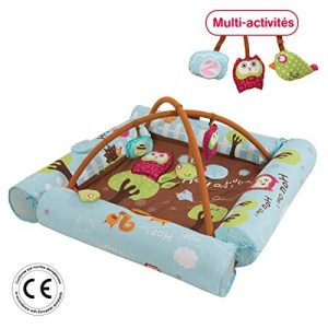 LUDI-Aire-dveil-Chouette-bleue-ds-la-naissance-Tapis-moelleux-116-x-116-cm-lavable-en-machine-4-Boudins-gonflables-qui-crer-un-cocon-scuris-5-activits-pour-jouer-Arches-amovibles-2805-0